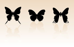 силуэт бабочки Стоковое Изображение RF