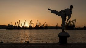 Силуэт бойца Тхэквондо на заходе солнца над морем Стоковые Изображения