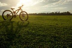 Силуэт большого велосипеда на поле зеленой травы с солнцем Стоковая Фотография RF