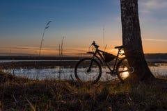 Силуэт велосипеда стоя около дерева против фона заходящего солнца Стоковые Фотографии RF