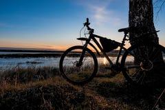 Силуэт велосипеда стоя около дерева против фона заходящего солнца Стоковые Изображения RF