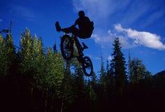силуэт велосипедиста Стоковое Изображение RF