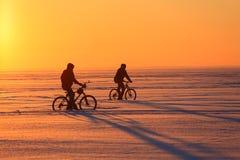Силуэт велосипедисты на заходе солнца Стоковые Изображения
