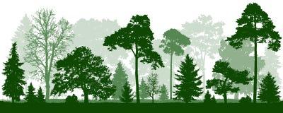 Силуэт деревьев зеленого цвета леса Природа, парк, ландшафт иллюстрация штока