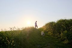 Силуэт женщины при собака идя вверх по пути гравия на заходе солнца Стоковые Изображения