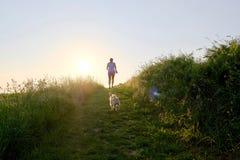 Силуэт женщины при собака идя вверх по пути гравия на заходе солнца Стоковое Изображение RF