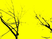 Силуэт завода предпосылки желтой черной текстуры листвы лесных деревьев природы декоративный стоковая фотография rf