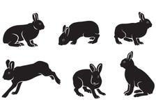 силуэт зайцев Иллюстрация вектора