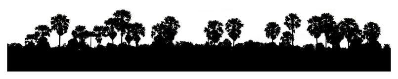 Силуэт кокосовой пальмы с панорамой Стоковое Фото