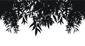 силуэт листьев Стоковое Фото