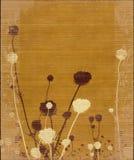 силуэт лужка цветка длинний запрудил желтый цвет Стоковые Изображения RF
