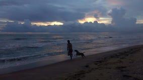 Силуэт молодого человека с бегами собаки вдоль пляжа тропического океана на заходе солнца сток-видео