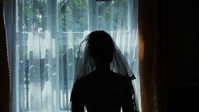 Силуэт невесты около окна сток-видео