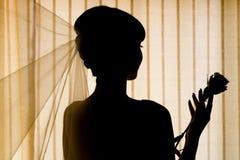 силуэт невесты Стоковая Фотография