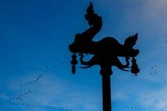 силуэт поляка лампы змея с летанием птицы и красивым b стоковые фотографии rf