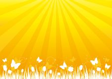 силуэт природы s предпосылки золотистый Стоковое фото RF