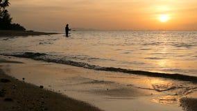Силуэт рыболова в действии закручивая на время захода солнца Традиционные азиатские занятие и путь получать еду видеоматериал