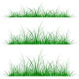 силуэт травы Стоковое Изображение RF