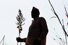 Силуэт фермера в махарастре, Индии Стоковое Фото
