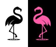 Силуэт фламинго вектора иллюстрация штока