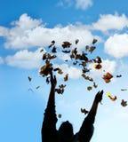 силуэт человека листьев бросая вверх Стоковые Фото