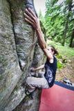Сильная девушка bouldering на открытом воздухе длинная рука стоковое фото