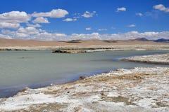 Сильно соляной Nak Ruldan озера в Тибете, Китае стоковые изображения