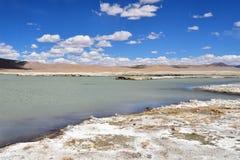Сильно соляной Nak Ruldan озера около деревни Yakra в Тибете летом, Китае стоковые изображения