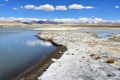 Сильно соляной Nak Ruldan озера около деревни Yakra в Тибете летом, Китае стоковая фотография rf