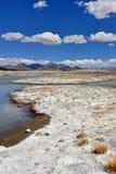 Сильно соляной Nak Ruldan озера около деревни Yakra в Тибете в солнечной погоде, Китае стоковые изображения rf