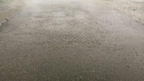 Сильный ветер, ливневый или шторм на улице города Сильные двигатели падения дождя на асфальт Средний план сток-видео