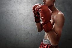 Сильный мышечный боксер на предпосылках стены стоковые изображения