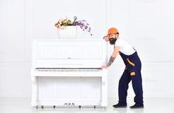 Сильный работник имея пролом изолированный на белой предпосылке Усмехаясь парень при усик пробуя двинуть белый рояль длиной Стоковое Изображение