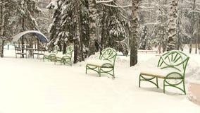 Сильный снегопад в Forest Park видеоматериал
