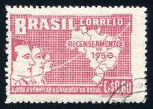 Символический бразильского демографического роста Стоковое Фото