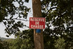 Символы и подписывают внутри пути леса Стоковое фото RF