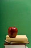символы школы Стоковое Фото