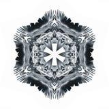 символ глифа орла гребеня Стоковые Фото