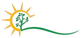 Символ дерева с солнцем стоковое изображение rf