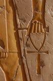 символ жизни Стоковое фото RF
