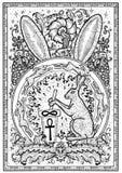 Символ кролика в рамке Волосы с украшениями миномета и пестика, барочных и флористических в огне объезжают Стоковые Изображения RF