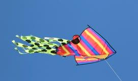 Символ летания змея freedm в голубом небе Стоковая Фотография