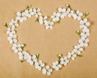 Символ сердца сделанный из белых цветков и бутонов весны на предпосылке коричневой бумаги Плоское положение Стоковые Изображения