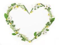 Символ сердца сделанный из изолированных цветков и листьев весны на белой предпосылке Плоское положение Стоковые Изображения RF