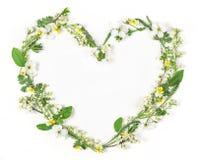 Символ сердца сделанный из изолированных цветков и листьев весны на белой предпосылке Плоское положение Стоковая Фотография