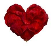 символ сердца Стоковые Фотографии RF