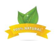 символ тесемки природы листьев eco Стоковые Фотографии RF