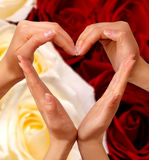 символ 2 сердец Стоковое Фото