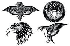 4 символа орла Стоковая Фотография