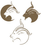 Символический голова коз Стоковое Изображение